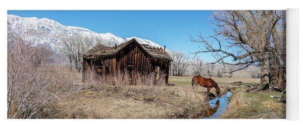 Pine Creek Horse Drinking Yoga Mat