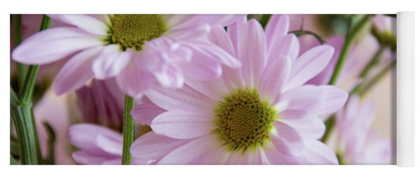Pink Daisies-1 Yoga Mat