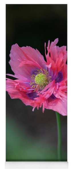 Yoga Mat featuring the photograph Pink Poppy by Dale Kincaid