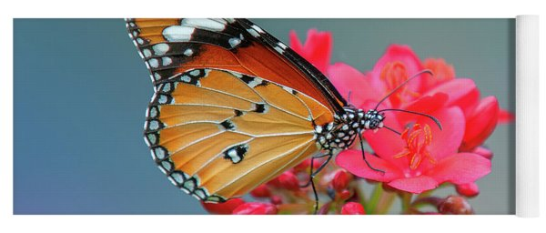 Plain Tiger Or African Monarch Butterfly Dthn0246 Yoga Mat