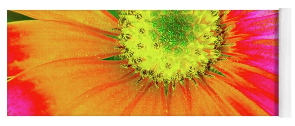 Pop Art Osteospermum 2 Yoga Mat