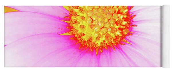Pop Art Osteospermum 3 Yoga Mat