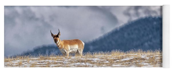 Pronghorn Yoga Mat