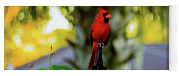 Proud Male Cardinal Yoga Mat