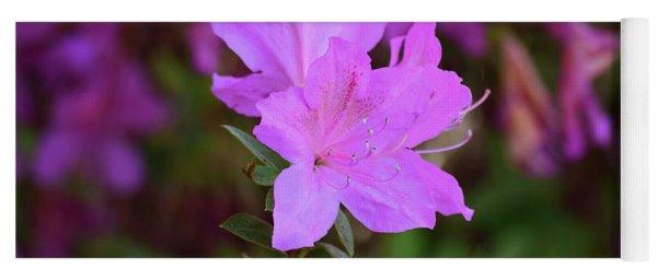 Purple Azaleas In Bloom Yoga Mat