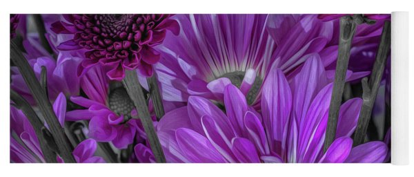 Purple Power Chrysanthem Selective Colorum  Yoga Mat