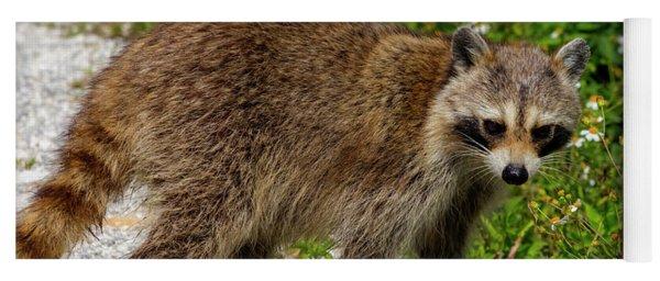 Raccoon Yoga Mat