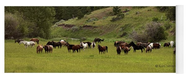 Ranch Horses At Pasture Yoga Mat