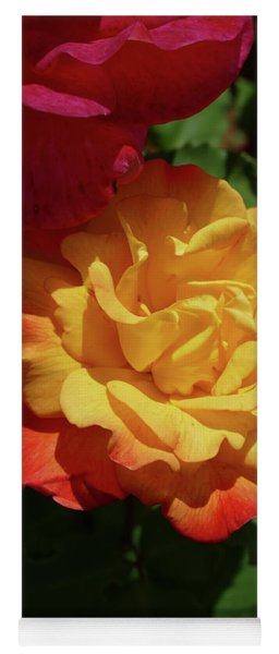 Red And Yellow Rio Samba Roses Yoga Mat