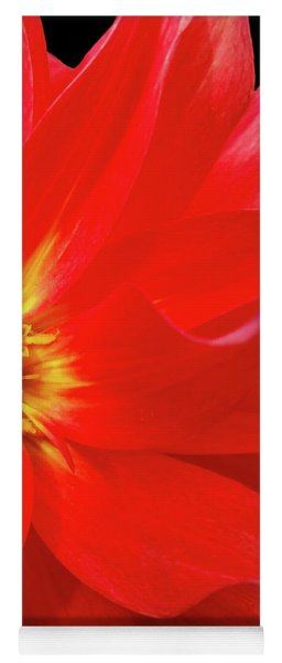 Red Dahlia On Black Background Yoga Mat