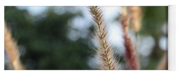 Red Grass - Pennisetum Setaceum 'rubrum' Yoga Mat