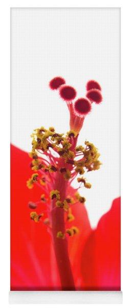 Red Hibiscus Macro Yoga Mat