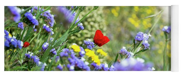 Red In Blue Field Yoga Mat