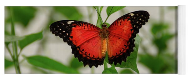 Red Lacewing Butterfly Yoga Mat