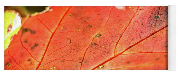 Red Leaf Yoga Mat
