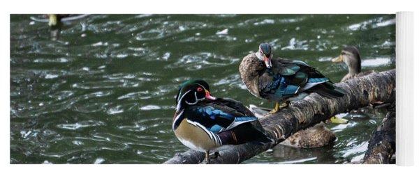 Resting Ducks Yoga Mat