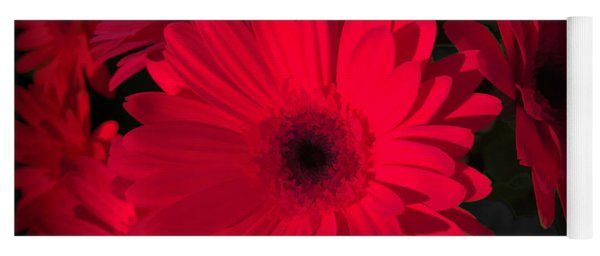 Rich, Red And Romantic Gerbera Yoga Mat