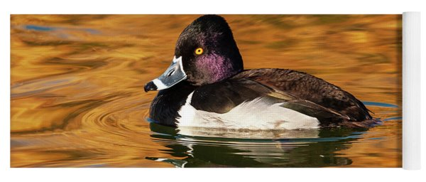 Ring-necked Duck Yoga Mat