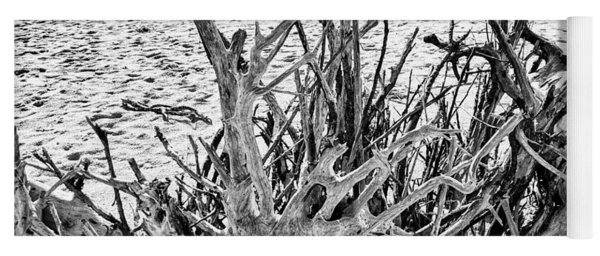 Rooted In Black And White Yoga Mat