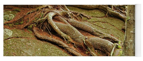 Roots On Rock Yoga Mat