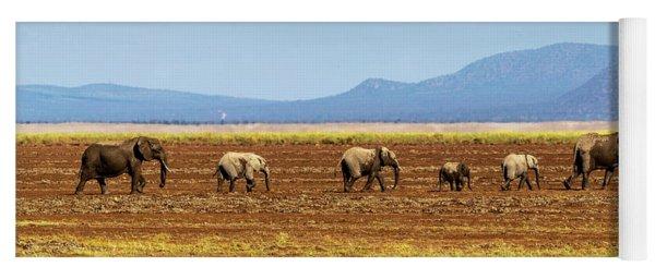 Row Of Elephants Walking In Dried Lake Yoga Mat