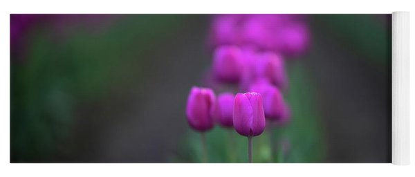 Row Of Tulips Magenta Beauties Yoga Mat