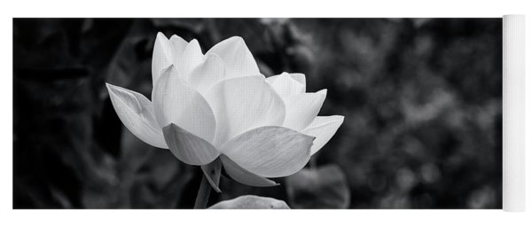Yoga Mat featuring the photograph Sacred Lotus Monochrome by Tim Gainey