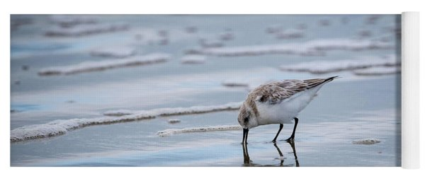 Sanderling Foraging Yoga Mat
