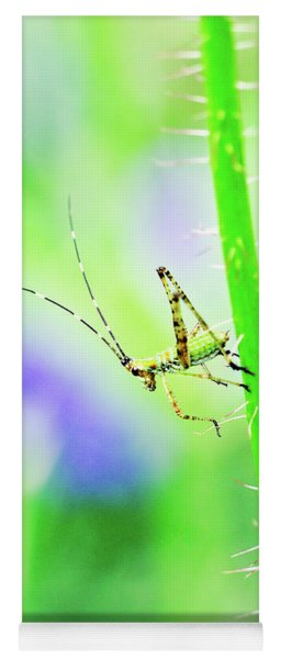 Say Hello To My Little Green Insect Friend Yoga Mat