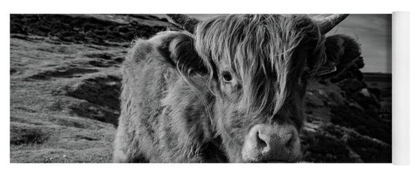 Saying Hello To A Highland Cow At Baslow Edge Black And White Yoga Mat