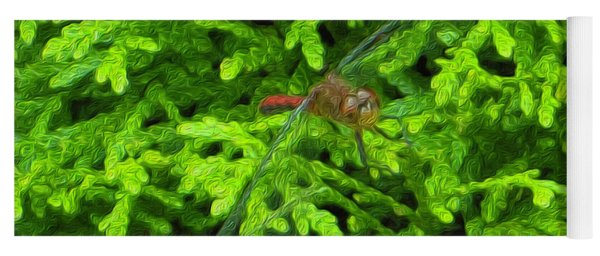 Yoga Mat featuring the photograph Scarlet Darter Male Dragonfly by Rockin Docks
