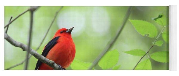 Scarlet Tanager Yoga Mat