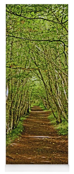 Scotland. Killiecrankie. Path Through The Trees. Yoga Mat