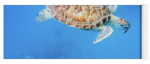 Sea Turtle And Fish Swimming Yoga Mat