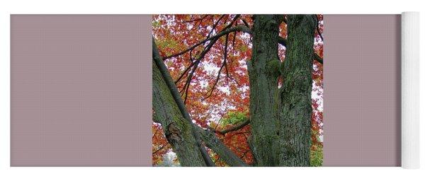 Seeing Autumn Yoga Mat
