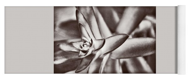 Yoga Mat featuring the photograph Sensual Succulent II by Leda Robertson