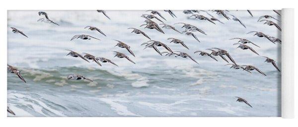 Shorebirds Fly By Yoga Mat