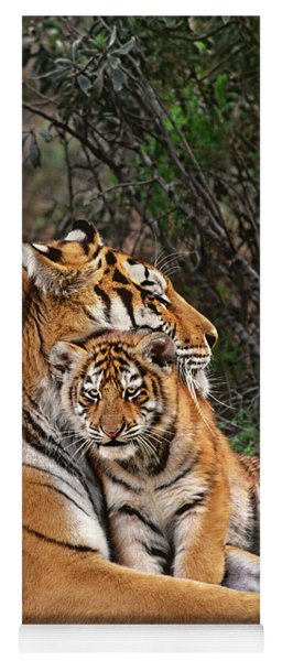 Siberian Tiger Mother And Cub Endangered Species Wildlife Rescue Yoga Mat