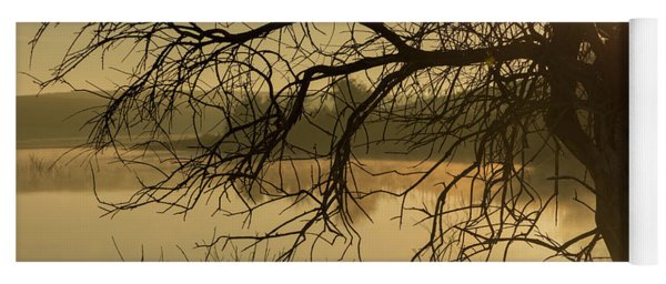 Silhouette Of A Tree By The River At Sunrise Yoga Mat