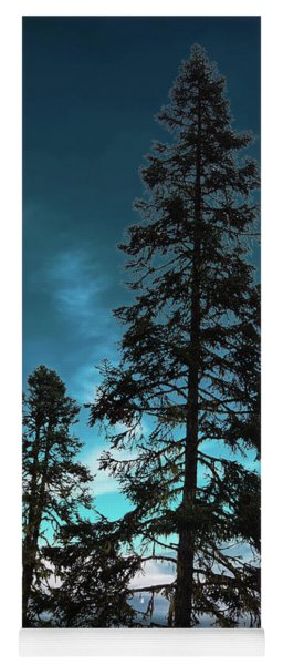 Silhouette Of Tall Conifers In Autumn Yoga Mat