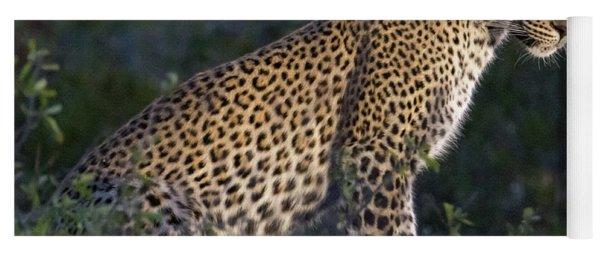 Sitting Leopard Yoga Mat
