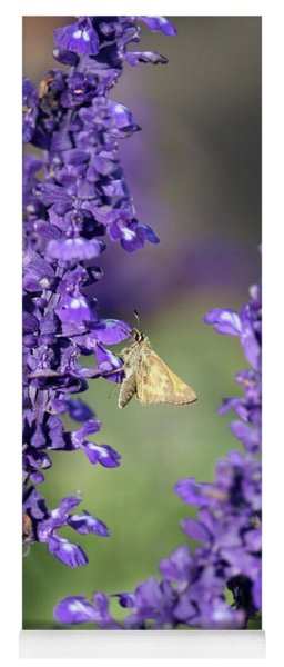 Skipper In The Salvia Yoga Mat