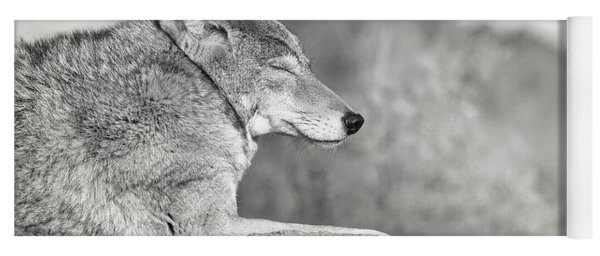 Sleepy Coyote Yoga Mat