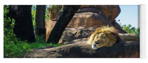 Sleepy Lion Yoga Mat