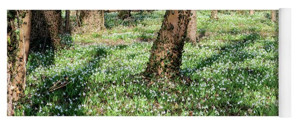 Snowdrop Field In The Forest Yoga Mat