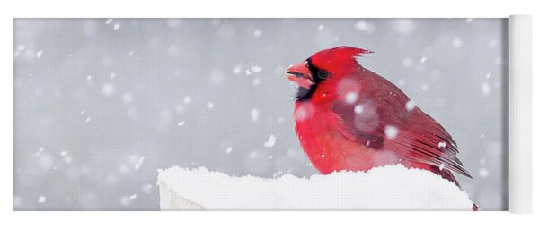 Yoga Mat featuring the photograph Snowy Cardinal by Lori Coleman