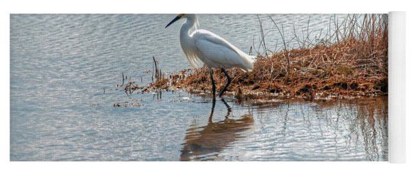 Snowy Egret Hunting A Salt Marsh Yoga Mat