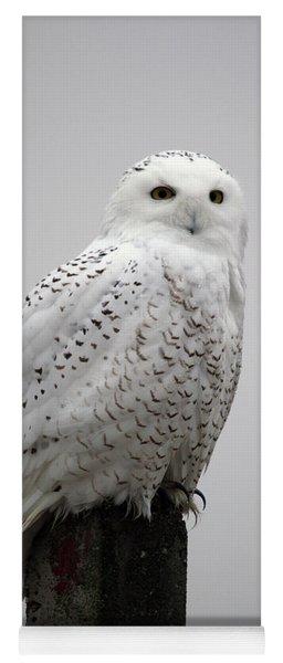 Snowy Owl In Fog Yoga Mat