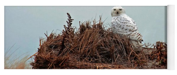 Snowy Owl In The Dunes Yoga Mat