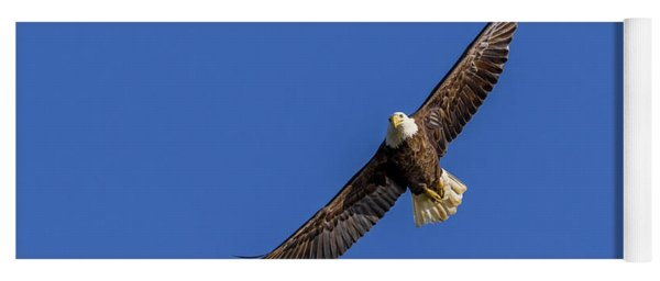 Yoga Mat featuring the photograph Soaring Eagle by Lori Coleman